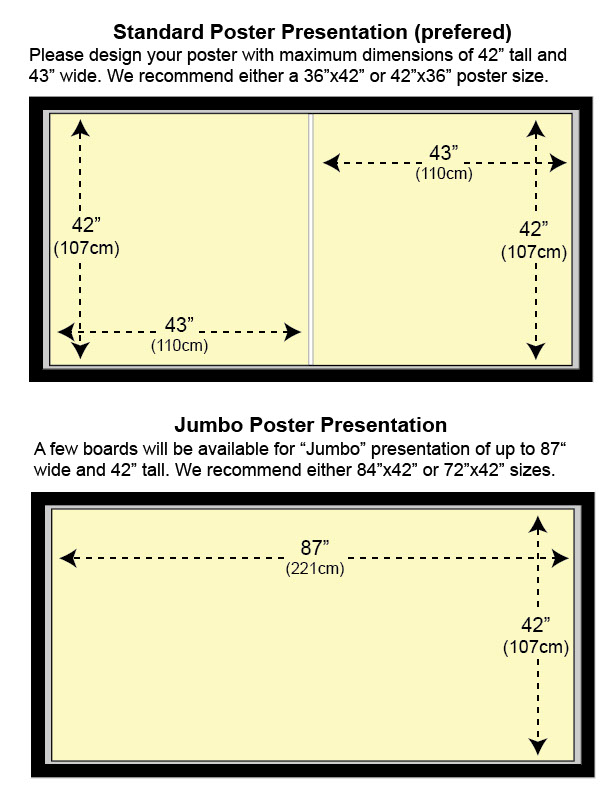 traditional poster size